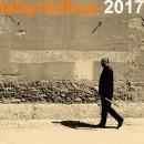Labyrinthu